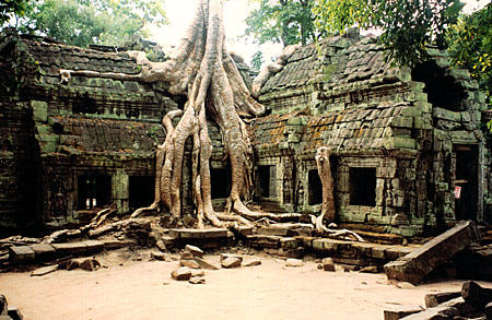 Explorers Found Something Jawdropping Deep in the Cambodian Jungle! Huge-tree-roots-straddle-a-structure-at-the-ta-prohm-temple-at-angkor-cam401