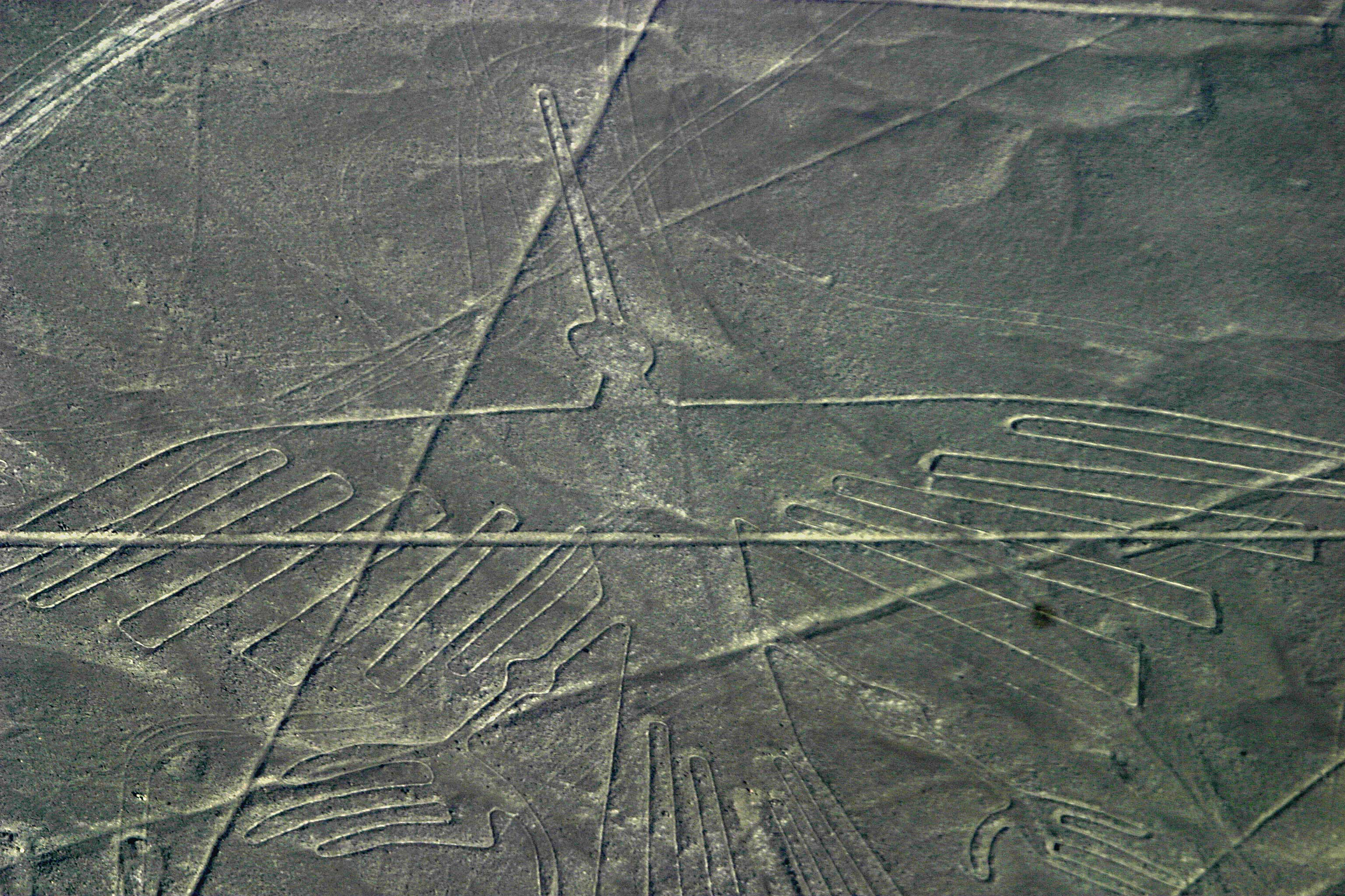 nazca lines what they might be Nazca lines – peru by wcc on  due to the enormous size they can barely be seen from a great  and what significance they might have tagged as: nazca lines,.