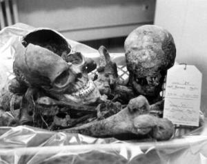 Remains of Martin Bormann